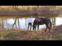 เจ้าของจูงม้าลงน้ำแต่มันกลัวน้ำมากๆ แต่พอได้ลงแล้วแค่นั้นแหละเละเทะ