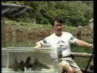 สารคดีตกปลา สารคดี คู่มือพรานเบ็ด พรานเบ็ด ปลาล่าเหยื่อ หมายธรรมชาติ
