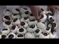 คลิปเมื่อมนุษย์ต้องช่วยลูกงูเหลือมออกจากไข่ ว่าแต่แม่งูไปใหน