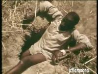 เหลือเชื่อ!วิธีจับงูอนาคอนด้าโดยใช้ขา เป็นเหยื่อล่อ