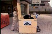คลิป รายการแกล้งคน ฮาๆ  กล่อง กอริลล่า ขำ ตลก ฮา 555 เฮฮา ลิง TV รายการ