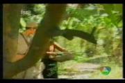คลิป Koo Gum (1990) 090