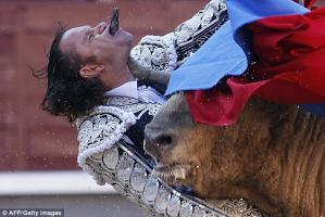 วัวกระทิง สเปน หวาดเสียว สยอง