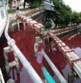 นึกว่าแลนด์มาร์กใหม่ คลองสมเด็จเจ้าพระยา น้ำมีสีแดง จะมองว่าสวยหรือยังไงดี ?