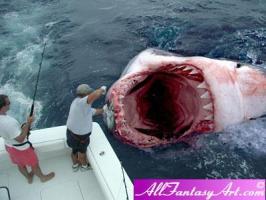 ฉลาม Megalodon Shark