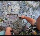 พบรอยเท้ามนุษย์โบราณบนภูหินร่องกล้า