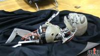สยองสุดๆ หุ่นยนต์ ทารก ไร้ผิวหนัง