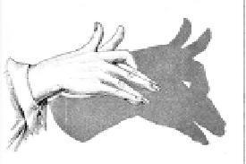 สอน วิธีทำมือ ให้เกิดเงา  Hand Shadow Art